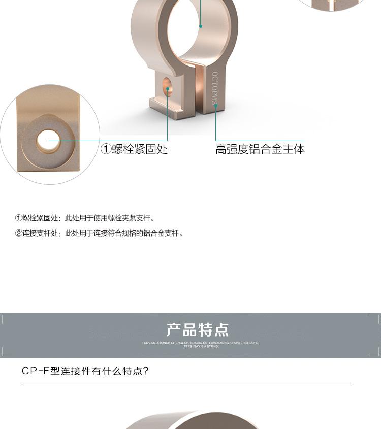 CP-FV1-0_08.jpg
